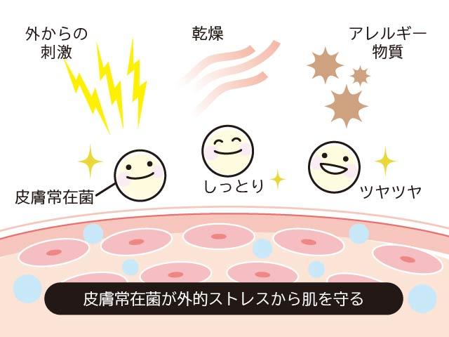 常在菌のバランスを保つ