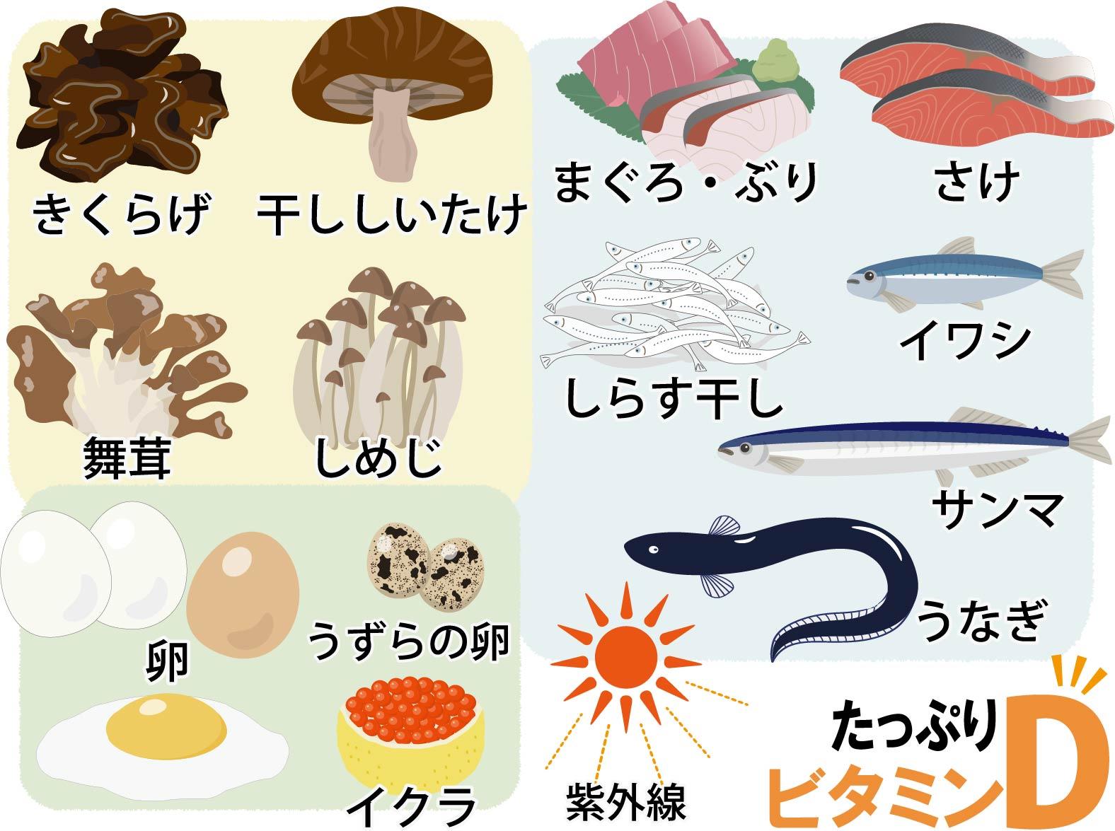 ビタミンDの豊富な食品